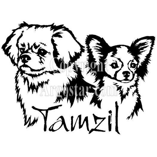 Tamzil Tibetan Spaniels Logo + Chihuahua