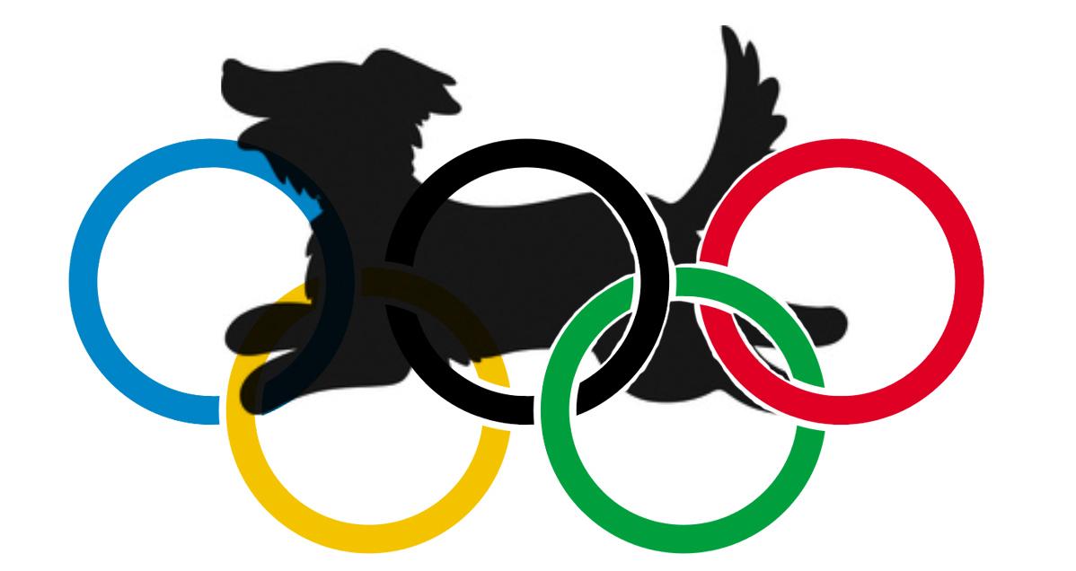 2019-Olympic-Logo.jpg