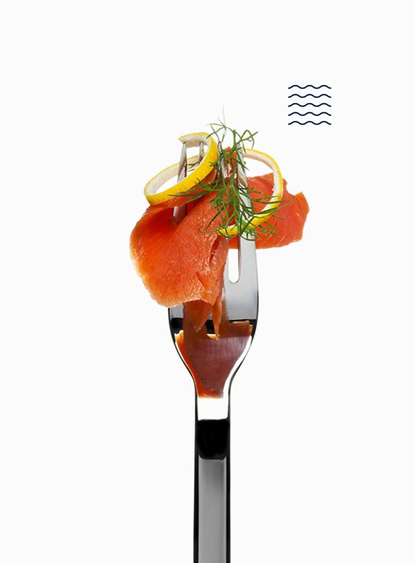 Barbatana restaurant brand photography