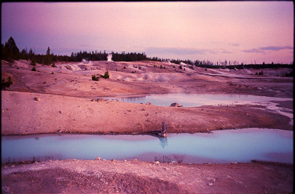 YellowstonePink_JCEpong_2014.jpg