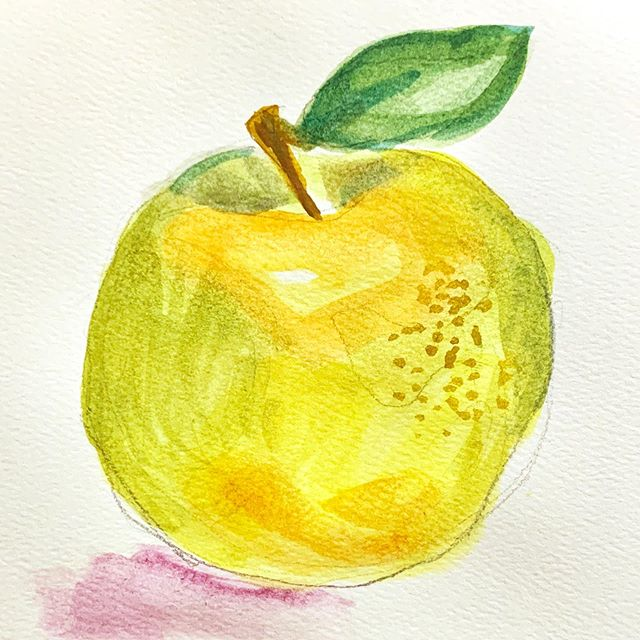 Back to quick exercises in color: Sketching fruit for teacher appreciation week :)