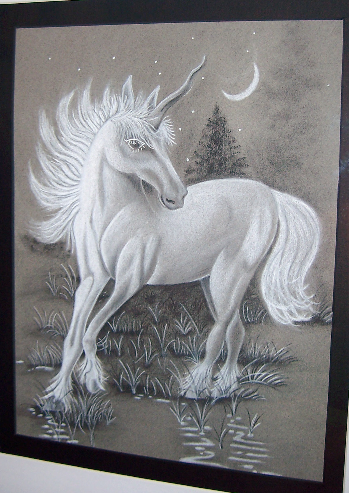 We had to bring a photo from home to draw. My niece, Kira, told me to draw the unicorn picture my mom had hanging in her bathroom. She loves horses so I wanted to draw something she would be proud to hang up in her room. This is my favorite piece of all that I have done so far. I had it professionally matted and framed and she hung it up herself above her bed.