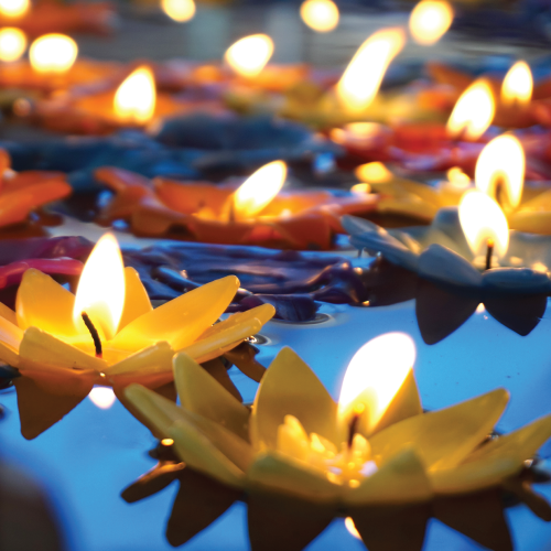 Lotus-shaped candles float in a pond.