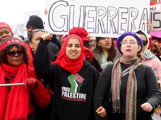 womens march morris 2018 9 free palestine.jpg