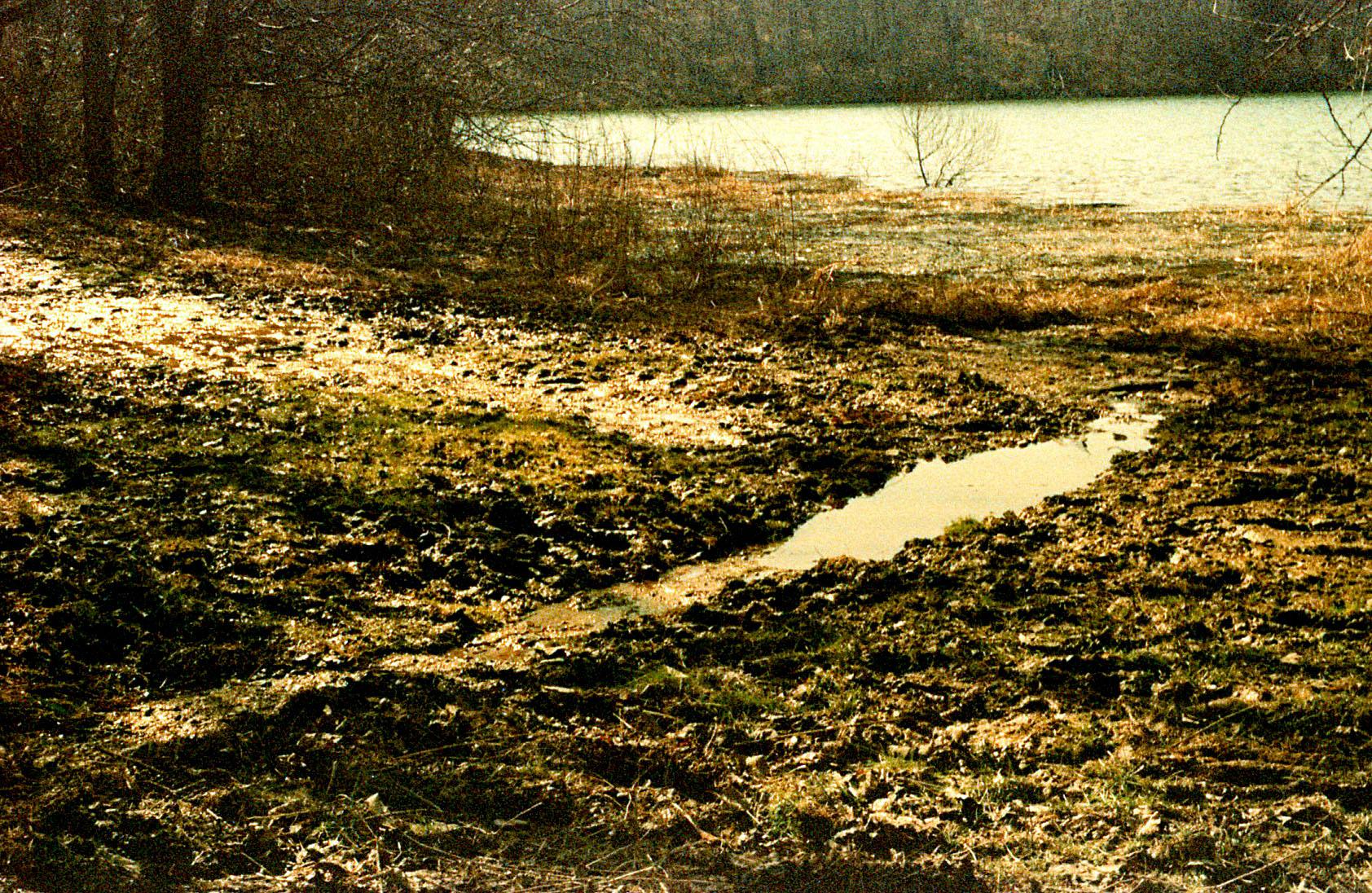 muddy_puddle.jpg