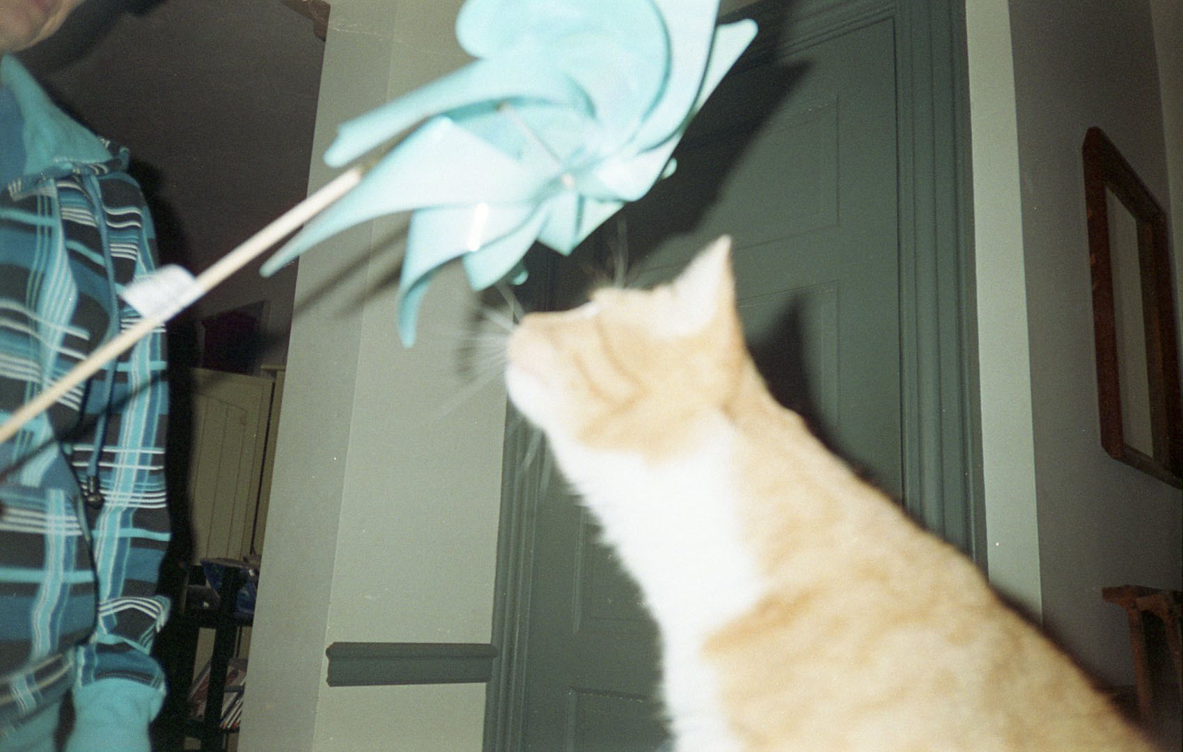 dali_with_pinwheel.jpg