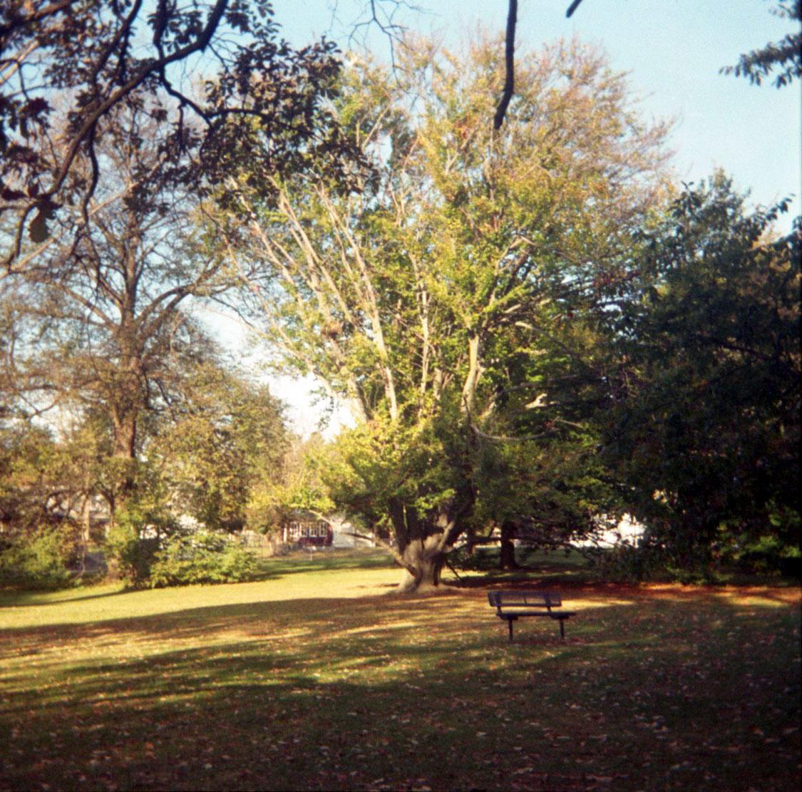 hanover_arboretum.jpg