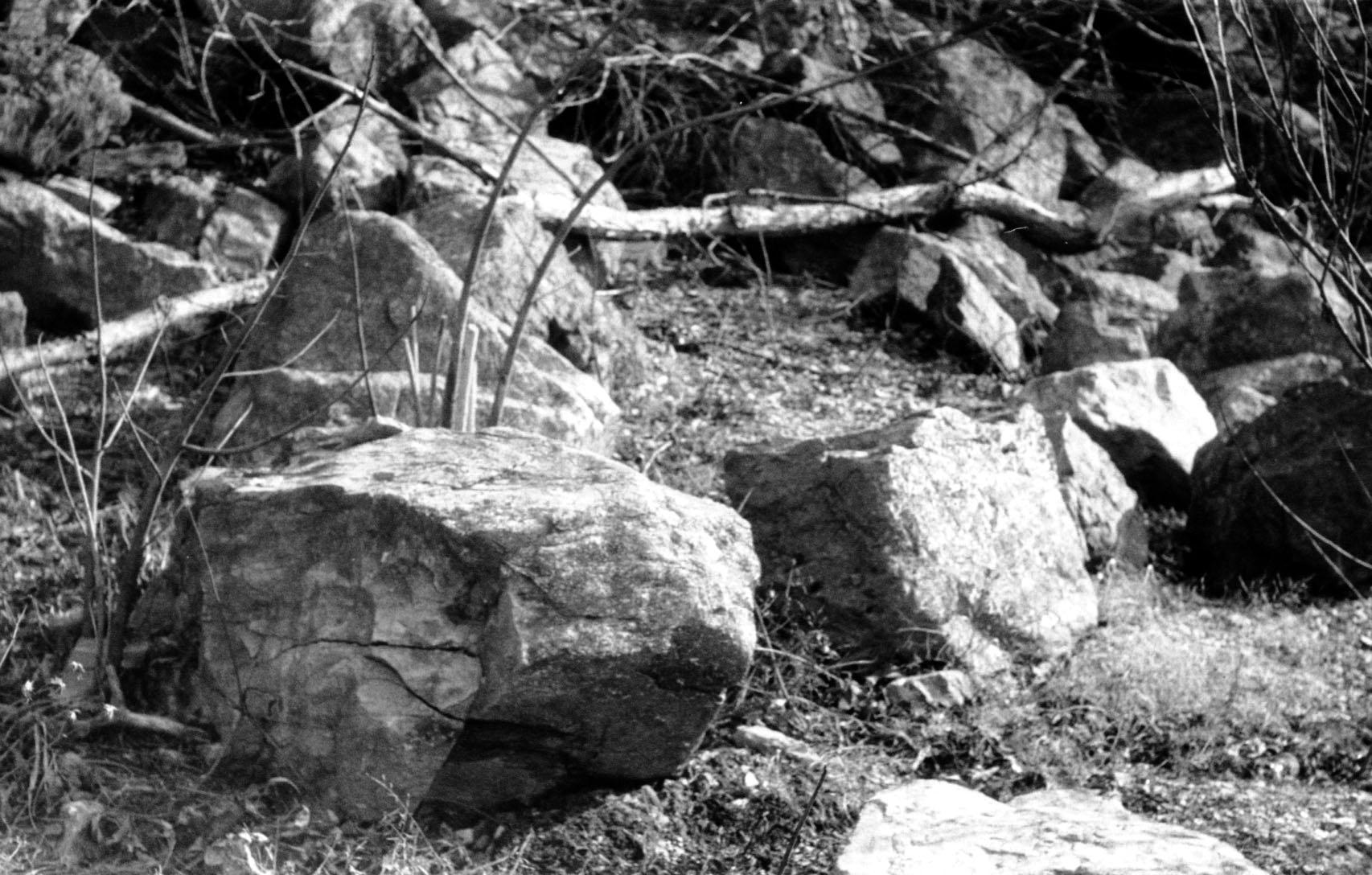rocks_closeup.jpg