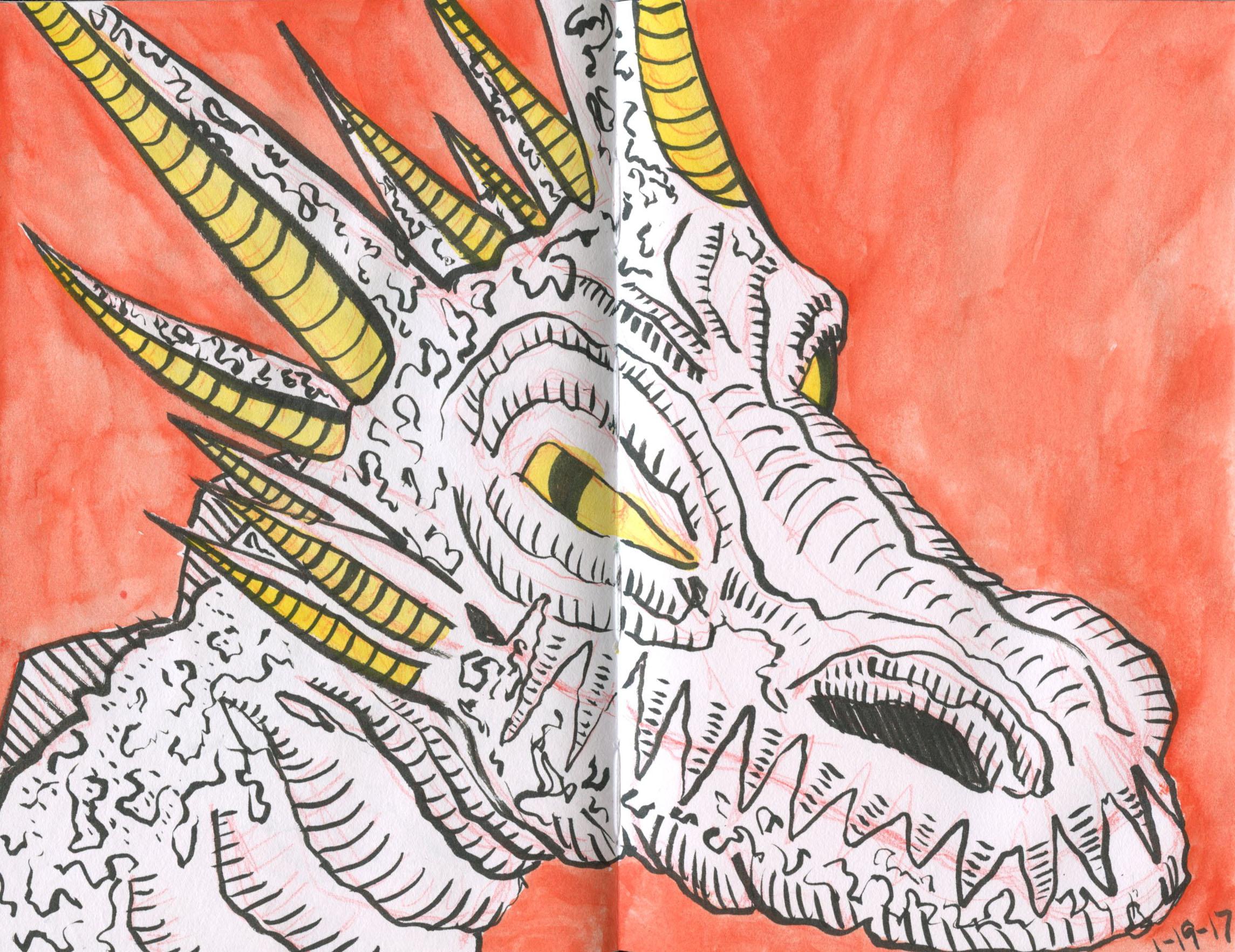 dragon_1-19-17.jpg