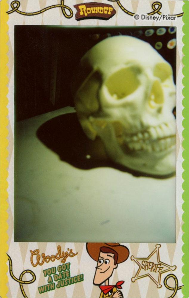 skull_frontview.jpg
