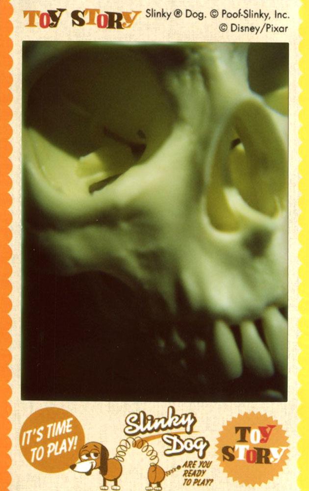 skull_right.jpg