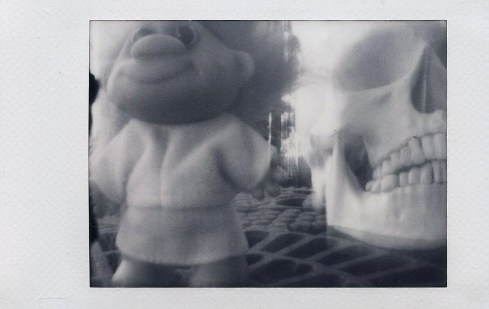 troll_skull_with_pinhole_lens.jpg