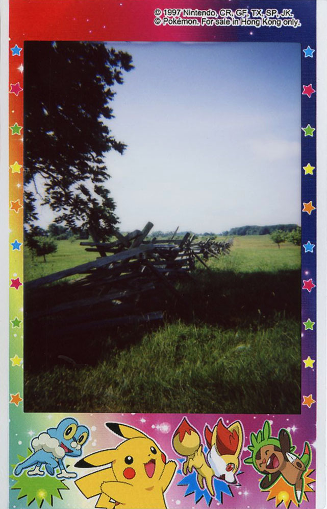 rose_farm_field_fences.jpg