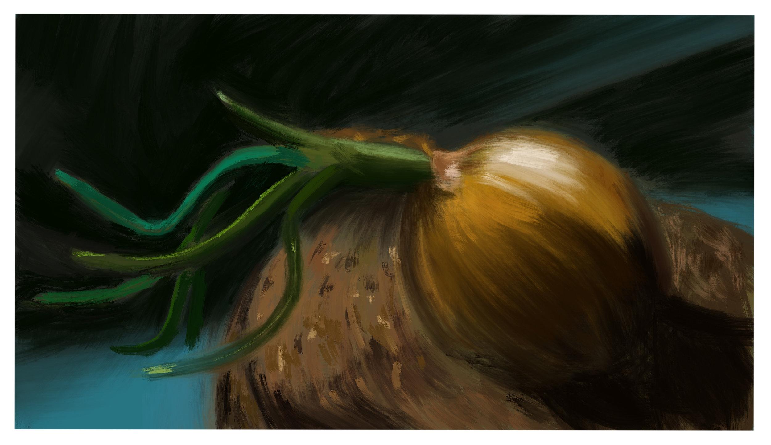 #13_-_Onion_Still_Life.jpg