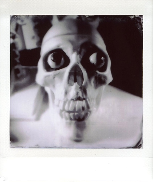 skull_tintype_monochrome.JPG