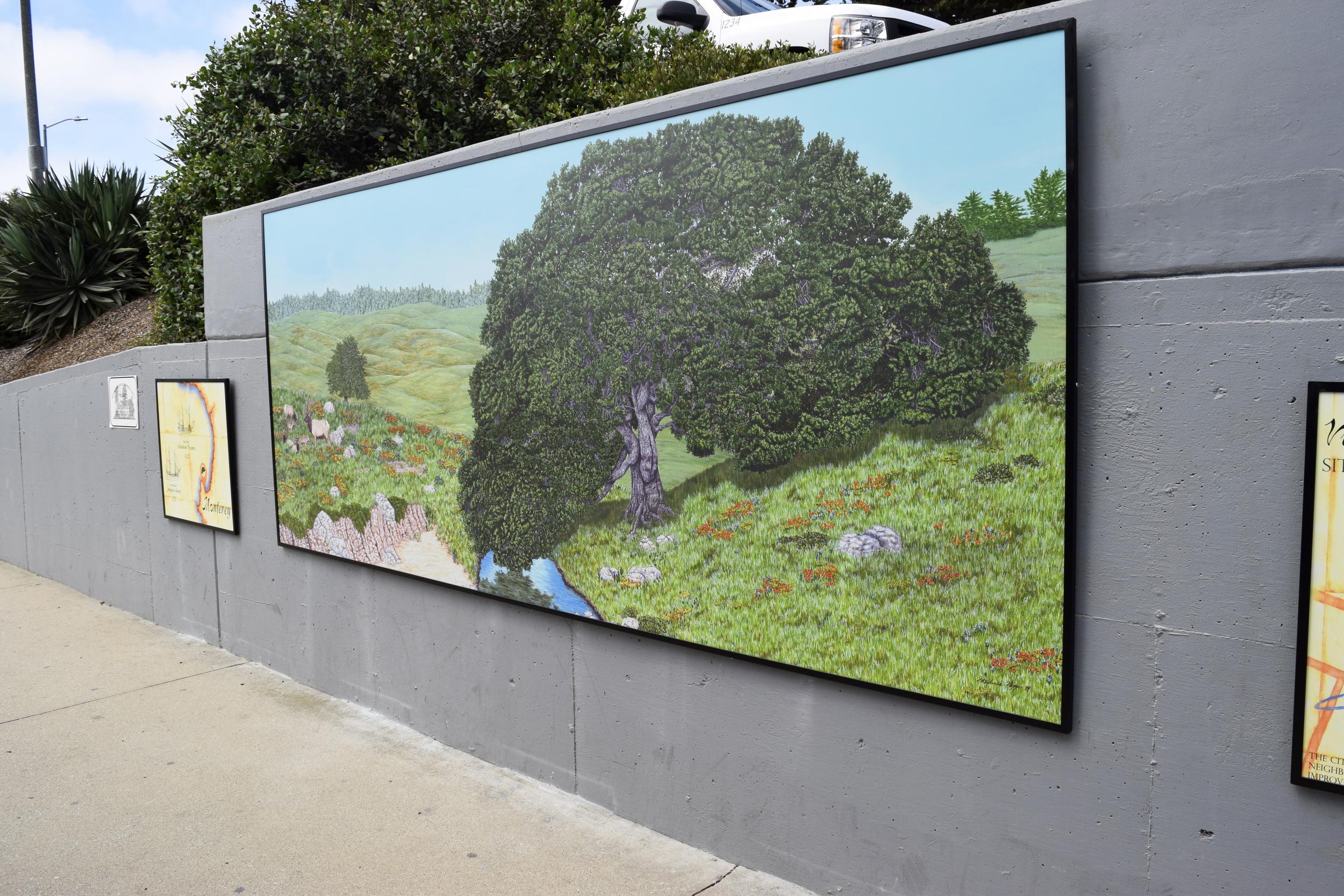 Monterey Vizcaino-Serra Oak Mural
