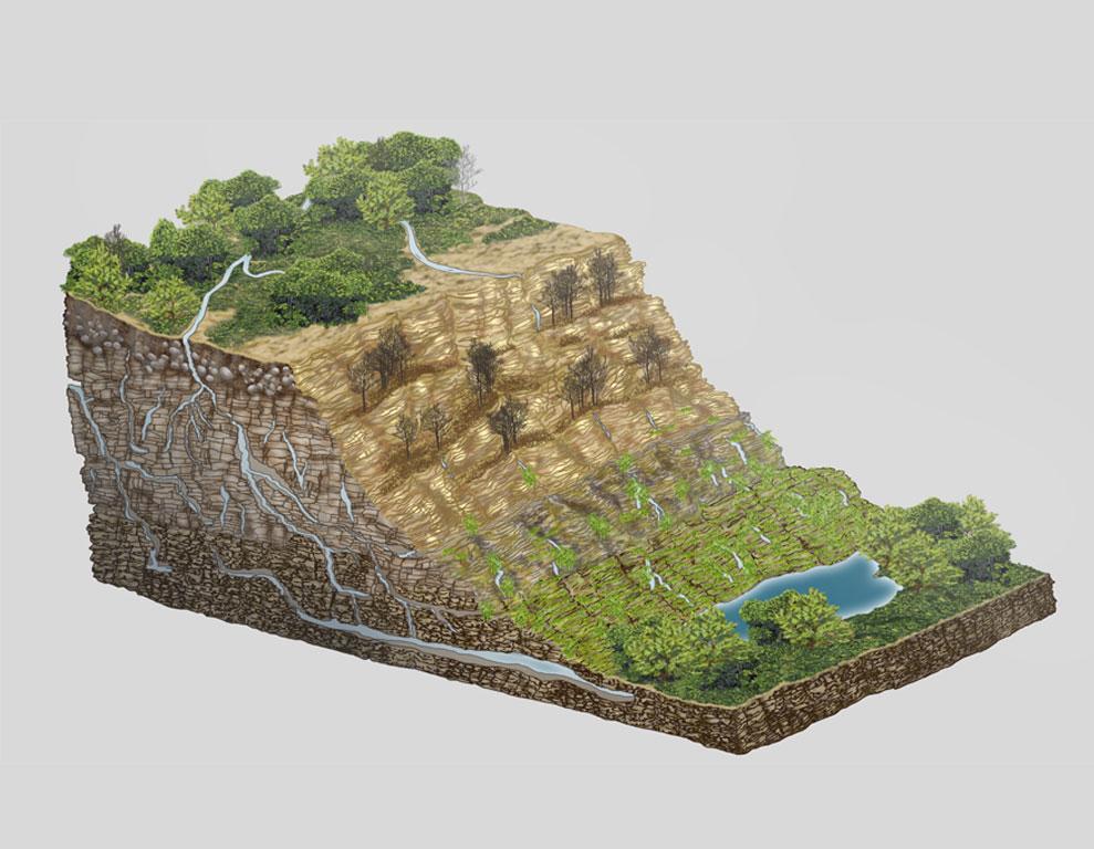 cliff-cutaway1.jpg