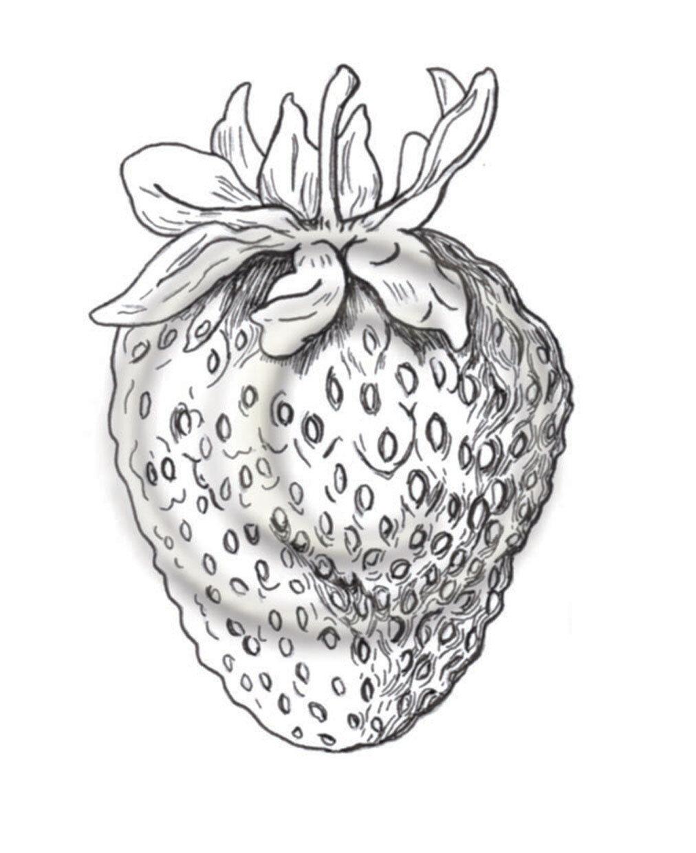 strawberry web.jpg