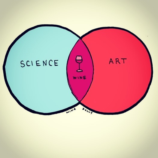👨‍🔬❤️🍷 #science #art #wine #winelover #winehumor #redredwine #wineglass #wineoclock #winefindr #winefacts #winery #viticulture #okanagan #winefolly @winefolly ❤️ thank you for the great posts!!!