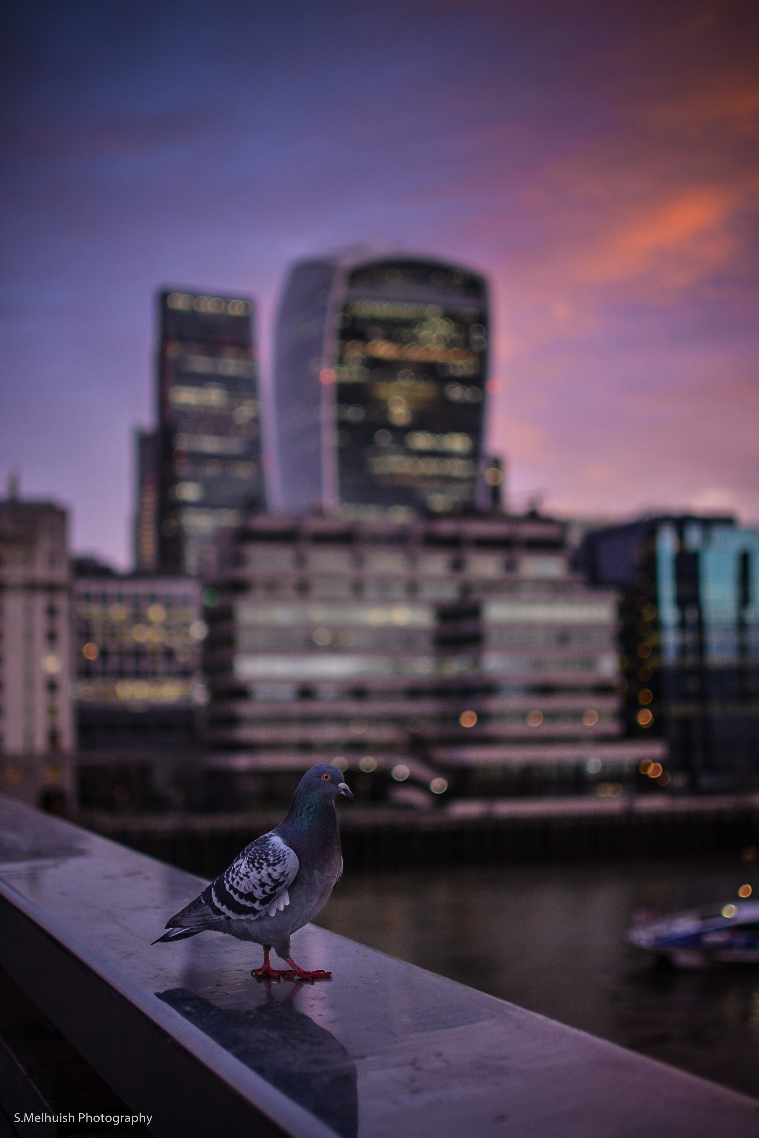 photobombed at London Bridge