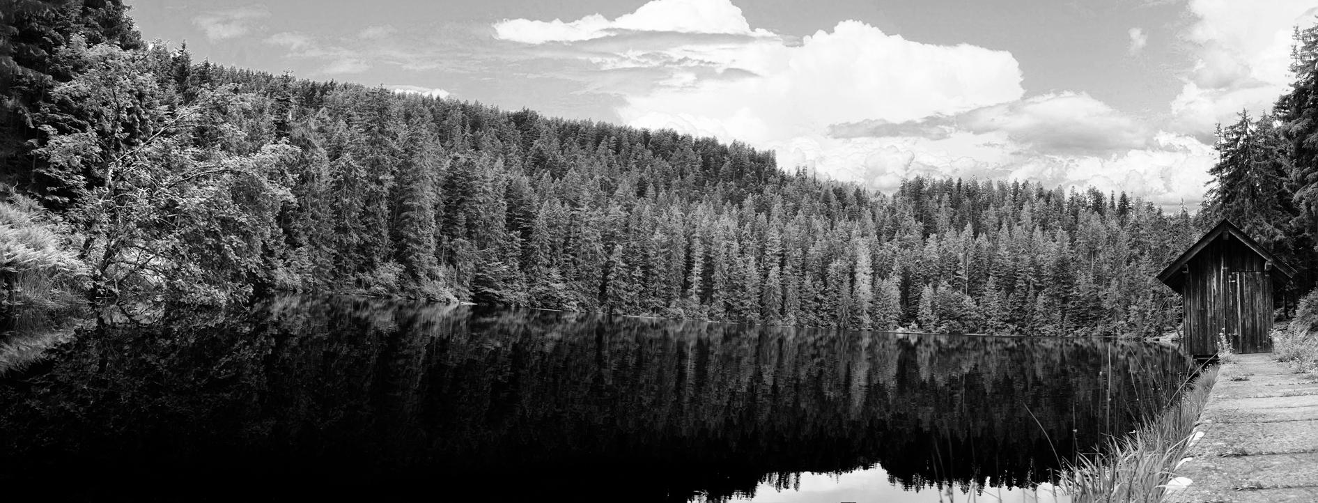 _glaswaldsee-pano.jpg