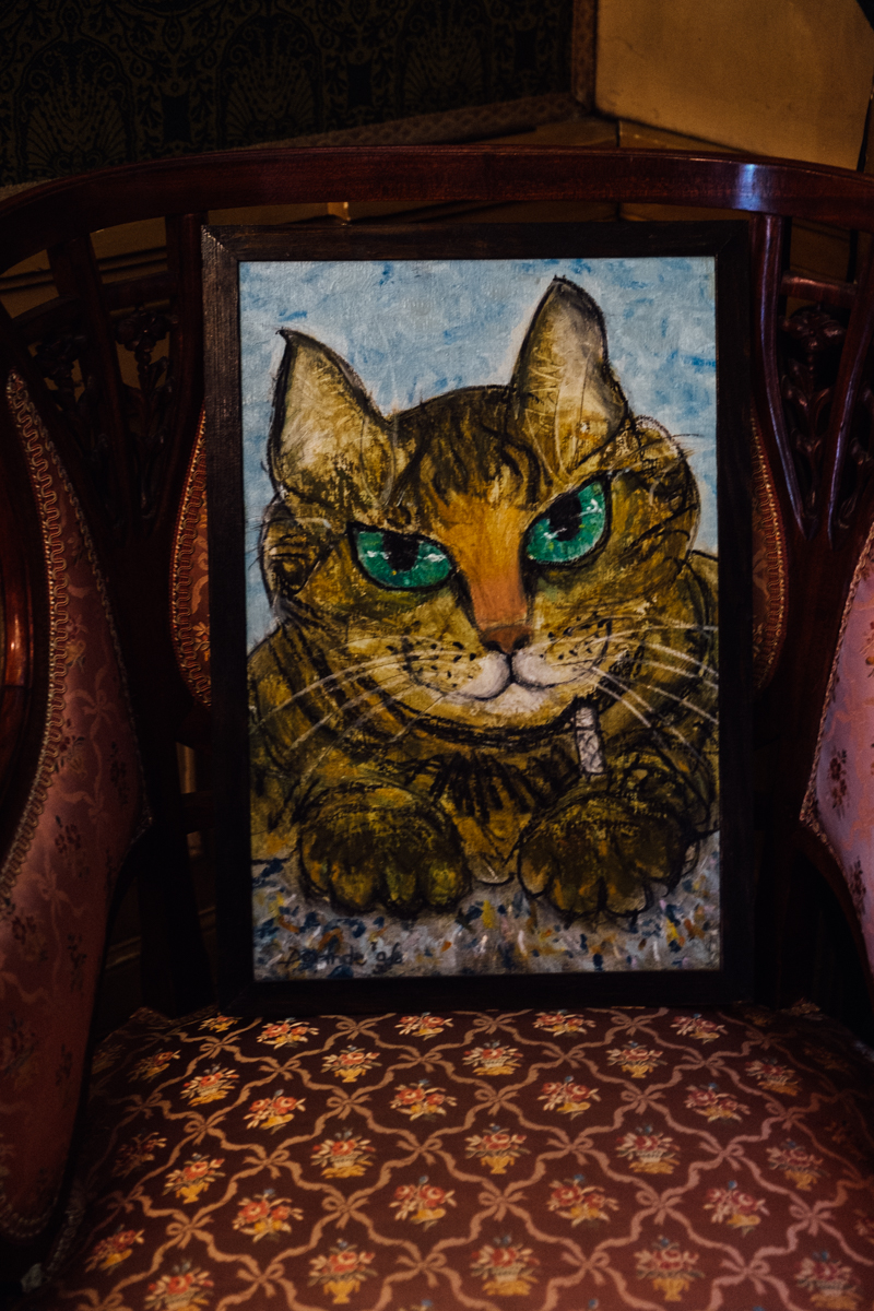 Cat art at Kattenkabinet