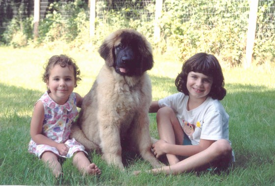 Sarabel, Linnea, and Yuma; 1998