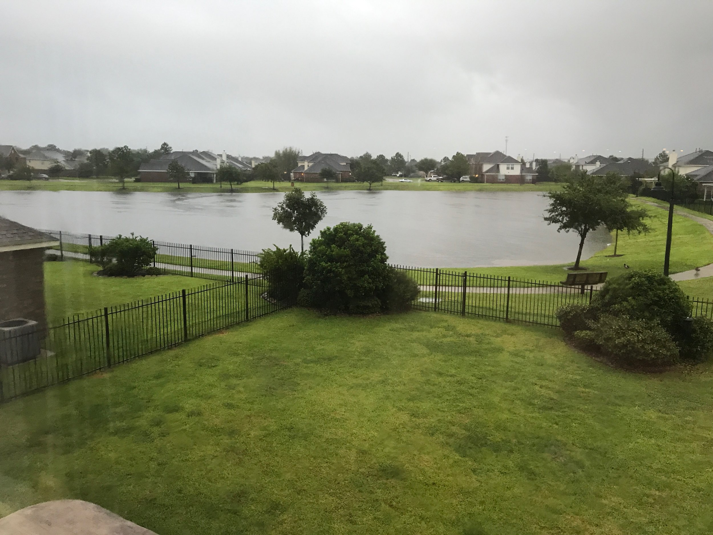 A view from the retention pond from 10 am Sunday August 27th.