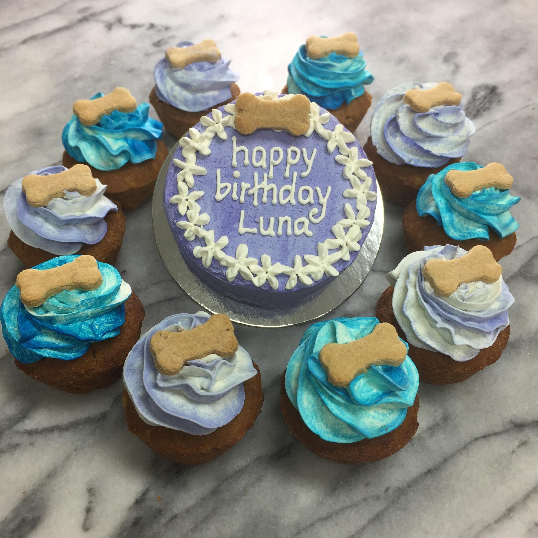 Luna's cake & pupcakes.jpg