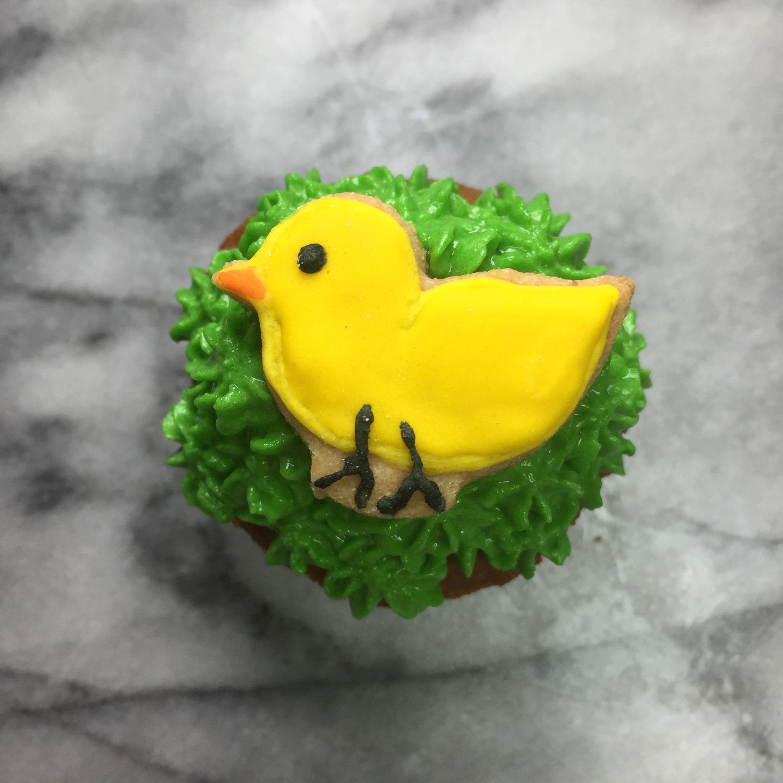 chick pupcake.jpg