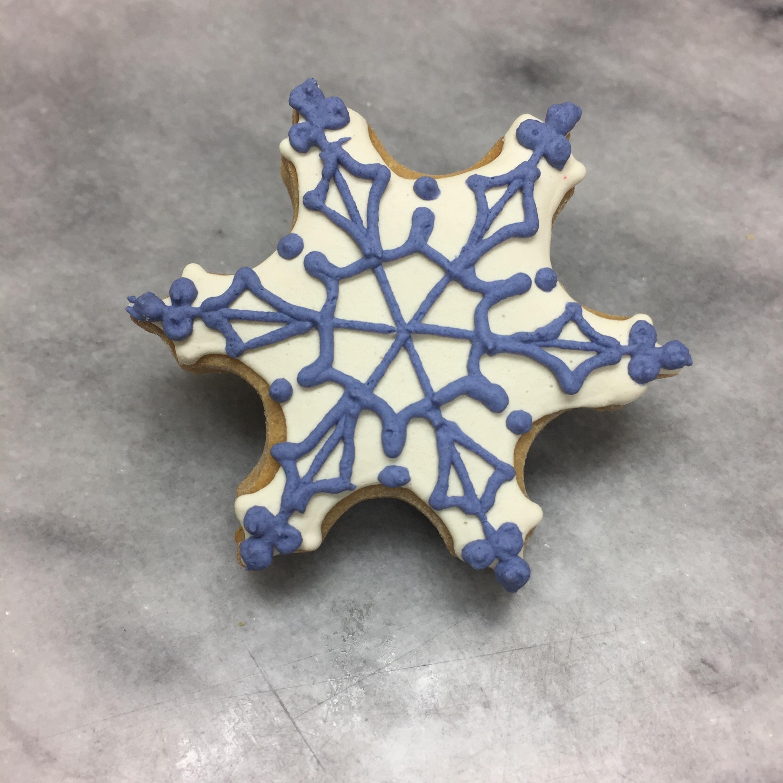 snowflake v3.JPG