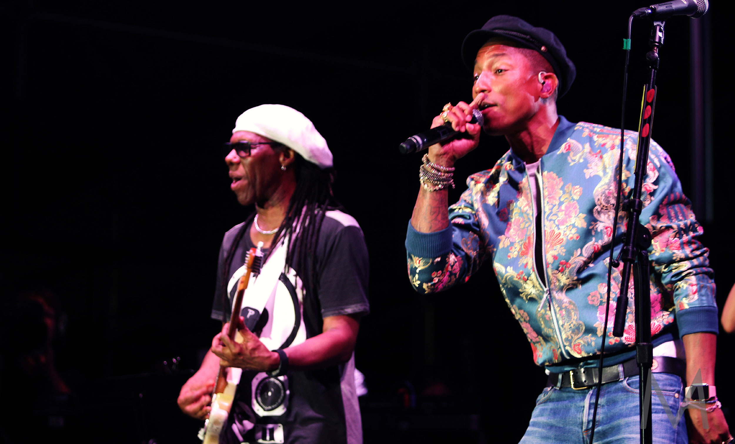 Nile Rodgers and Pharrell Williams
