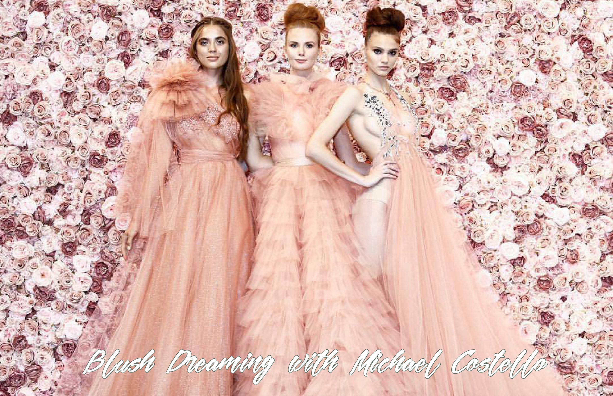 AM SEP BLUSH DREAMING WITH MICHAEL COSTELLO-1.jpg