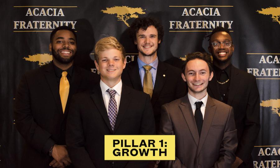 Pillar 1-Growth.png