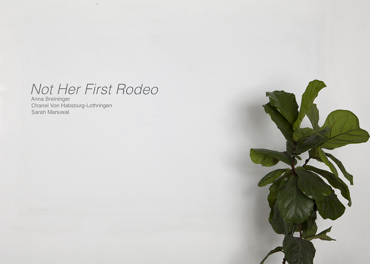 Not Her First Rodeo