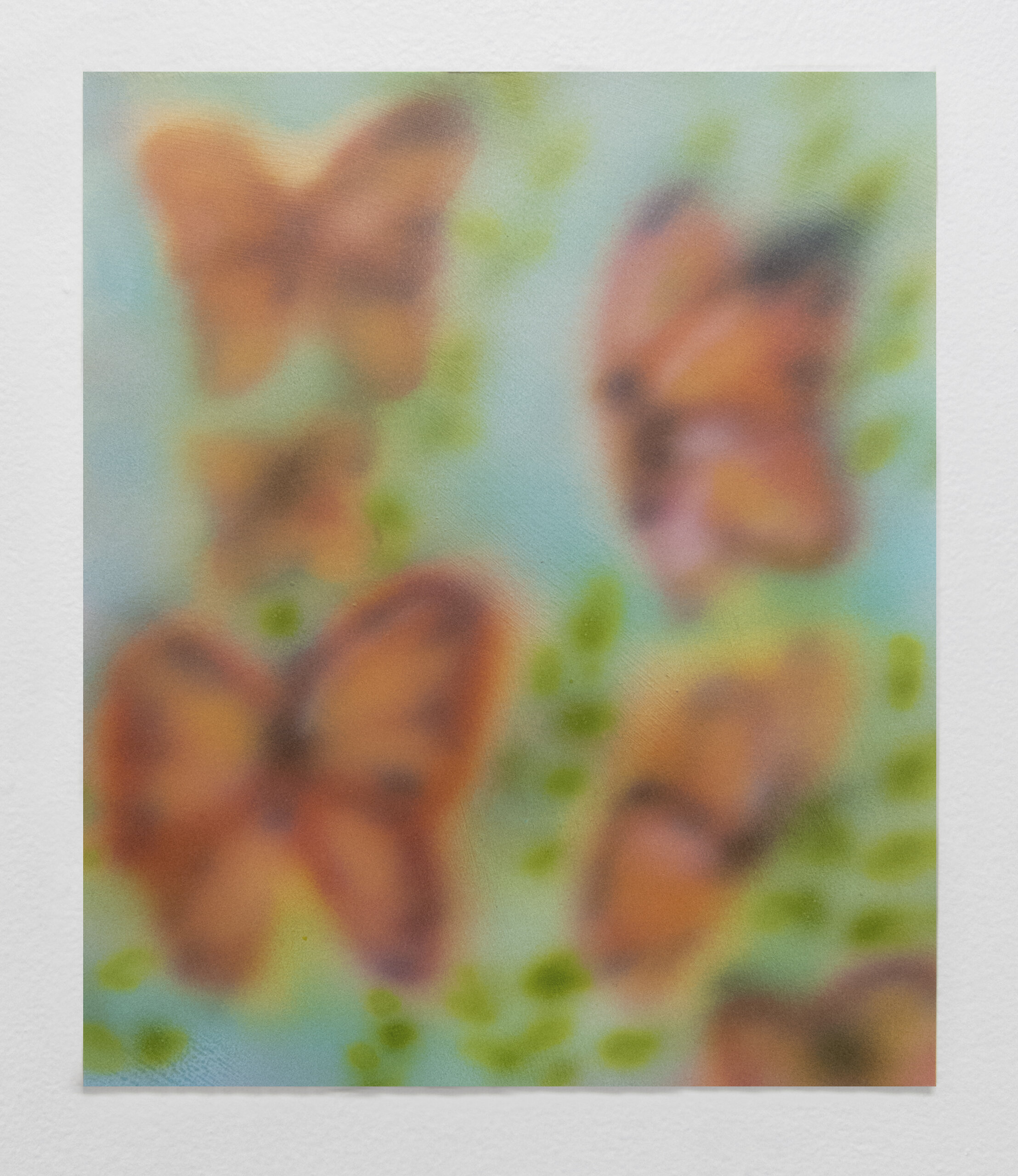 Untitled (Small Butterflies)