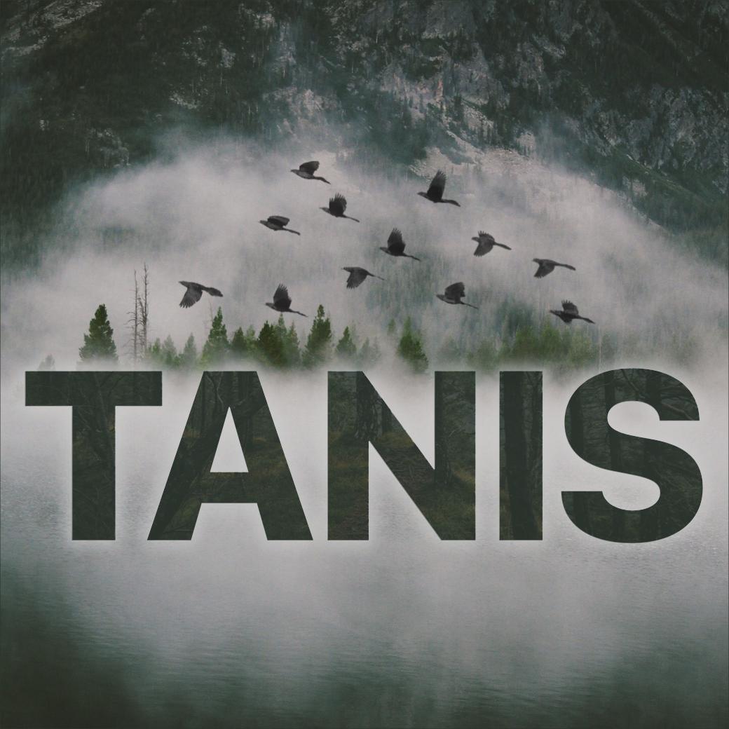 """Tanis """"grackles over logo"""" art by  Ryan Vandeput."""