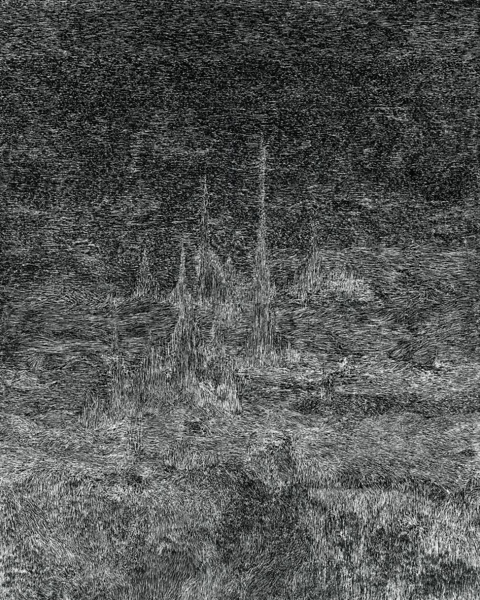 this trembling turf, 2016