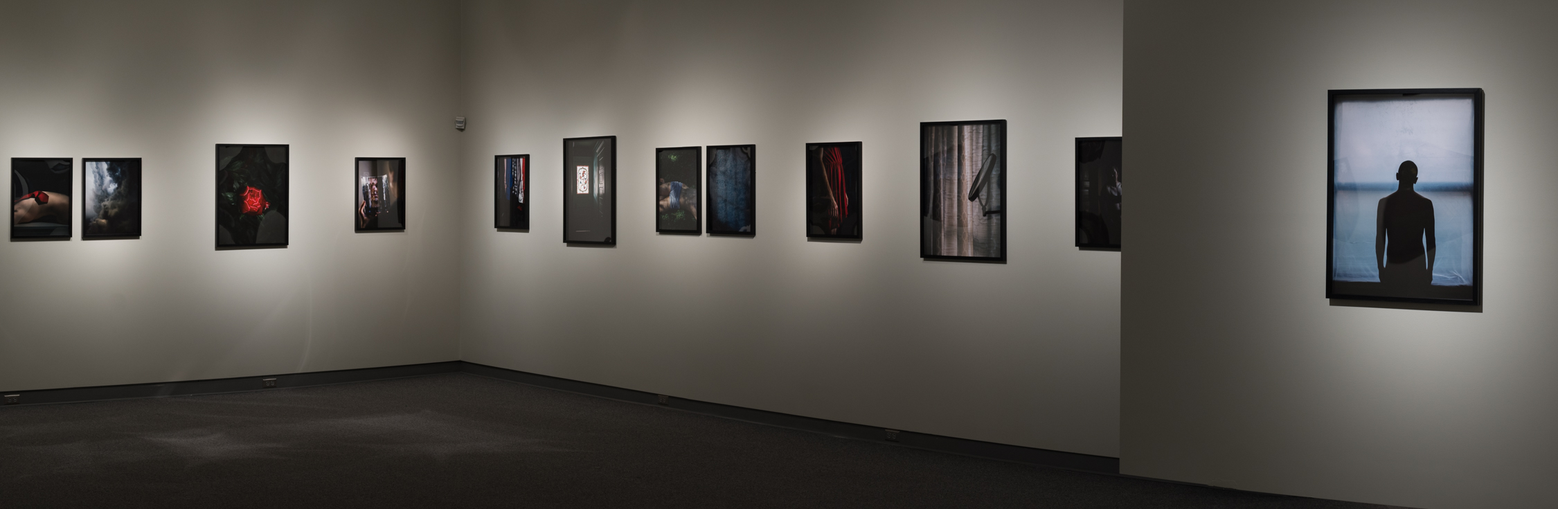 Installation view, The Rug's Topography