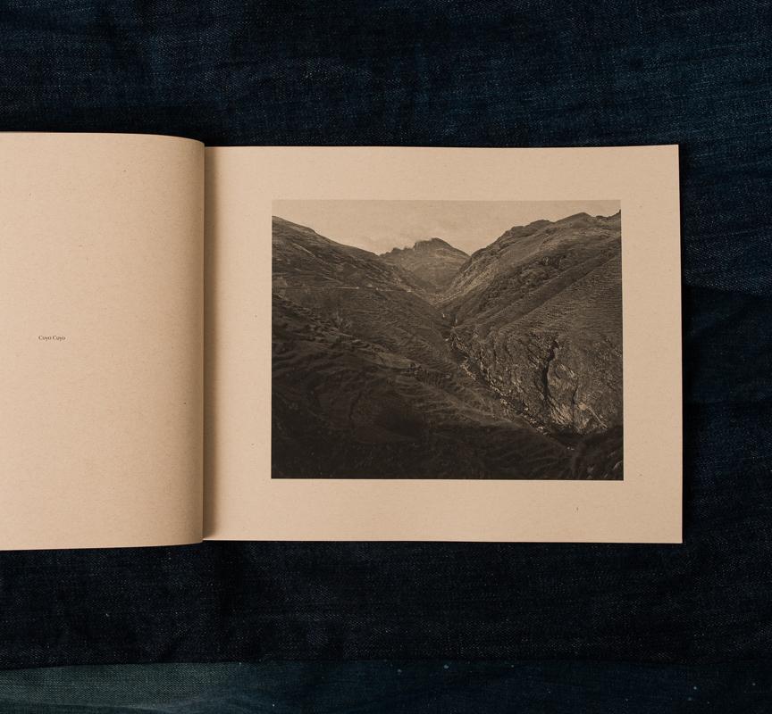 mountainfield-17.jpg