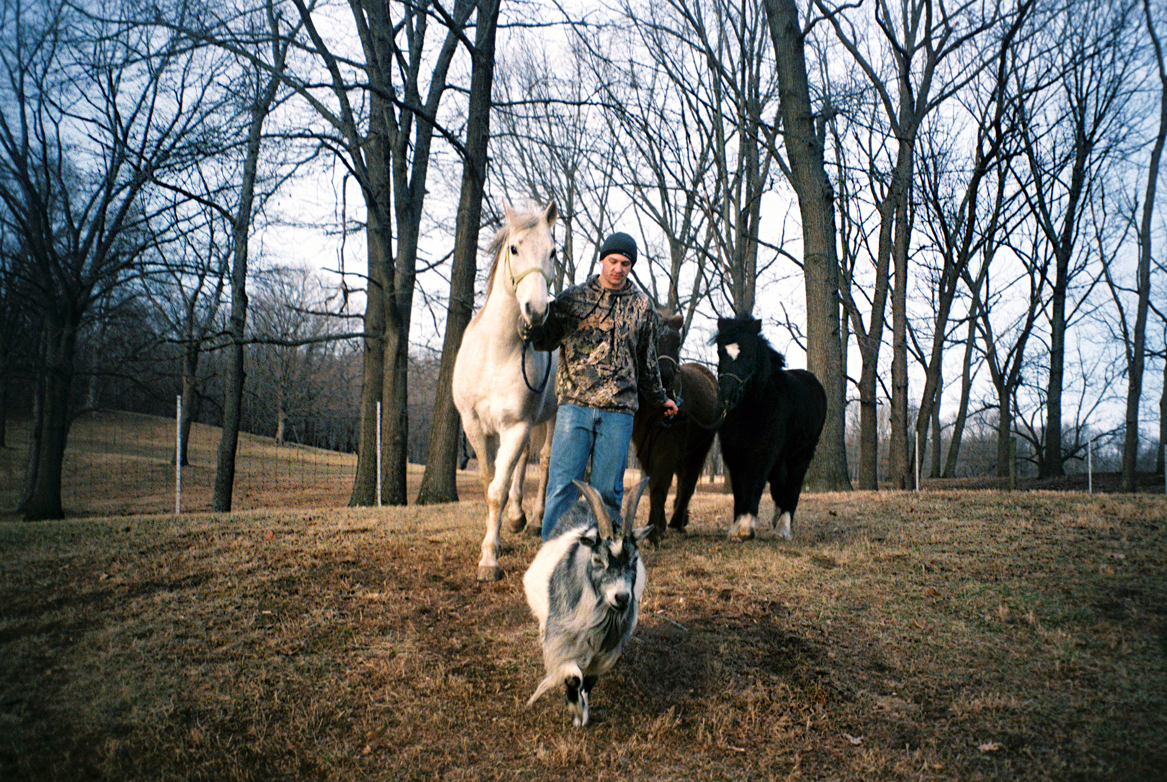 Brian walks his family's farm animals from their pens to the barn in Danville. Brian served in the Navy for four years — staying in 12 different countries — before returning home to care for his ailing grandfather.