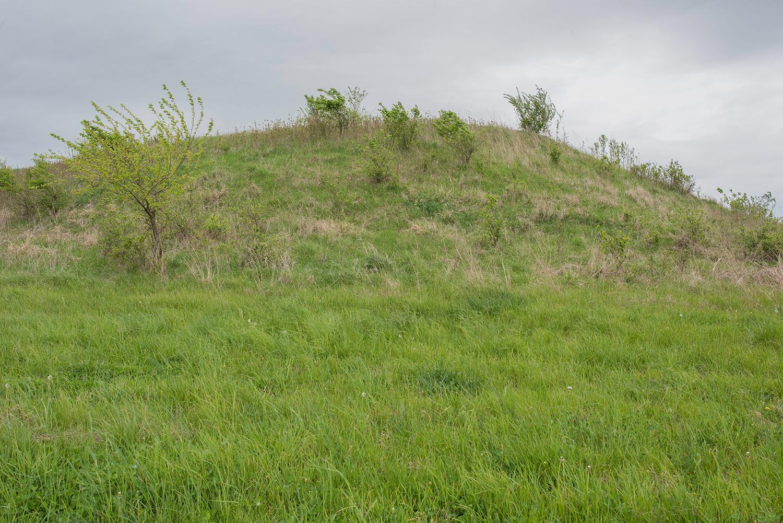 Mound.7056.jpg