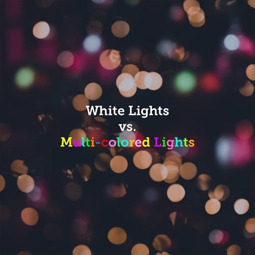 I love traditional white lights 😍 Reminders for this week: Core Group tomorrow night, and NO fusion Sunday 12/23!!