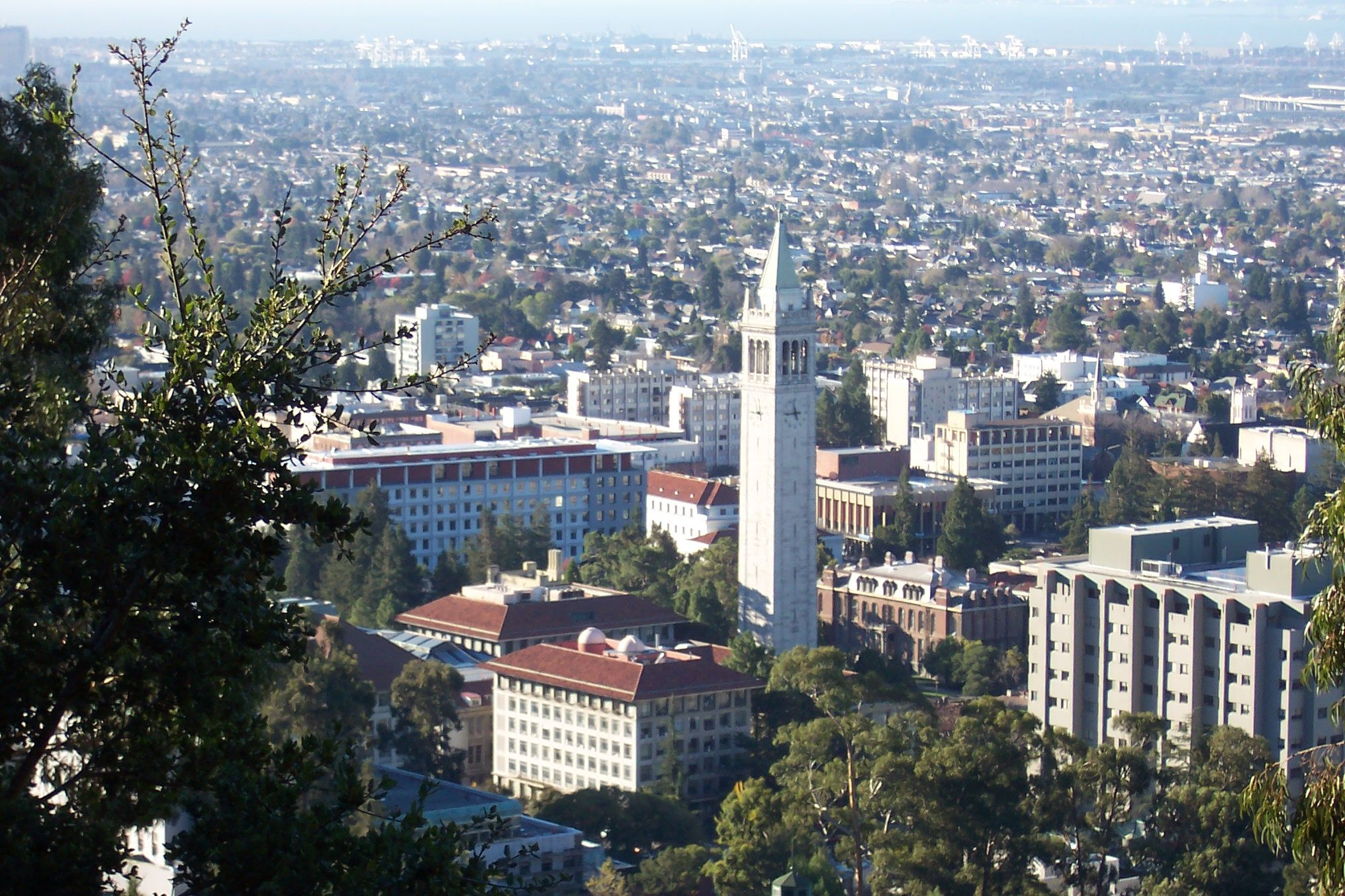 Overview of the University of California, Berkeley campus from the Berkeley Lab, from up the hills and south-westward. California, USA. Wikimedia/ User Introvert