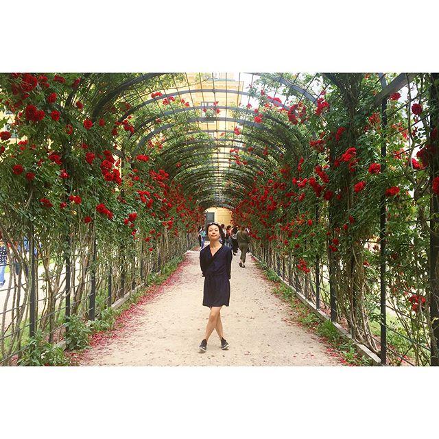 Roses are red etc.. #blablabla