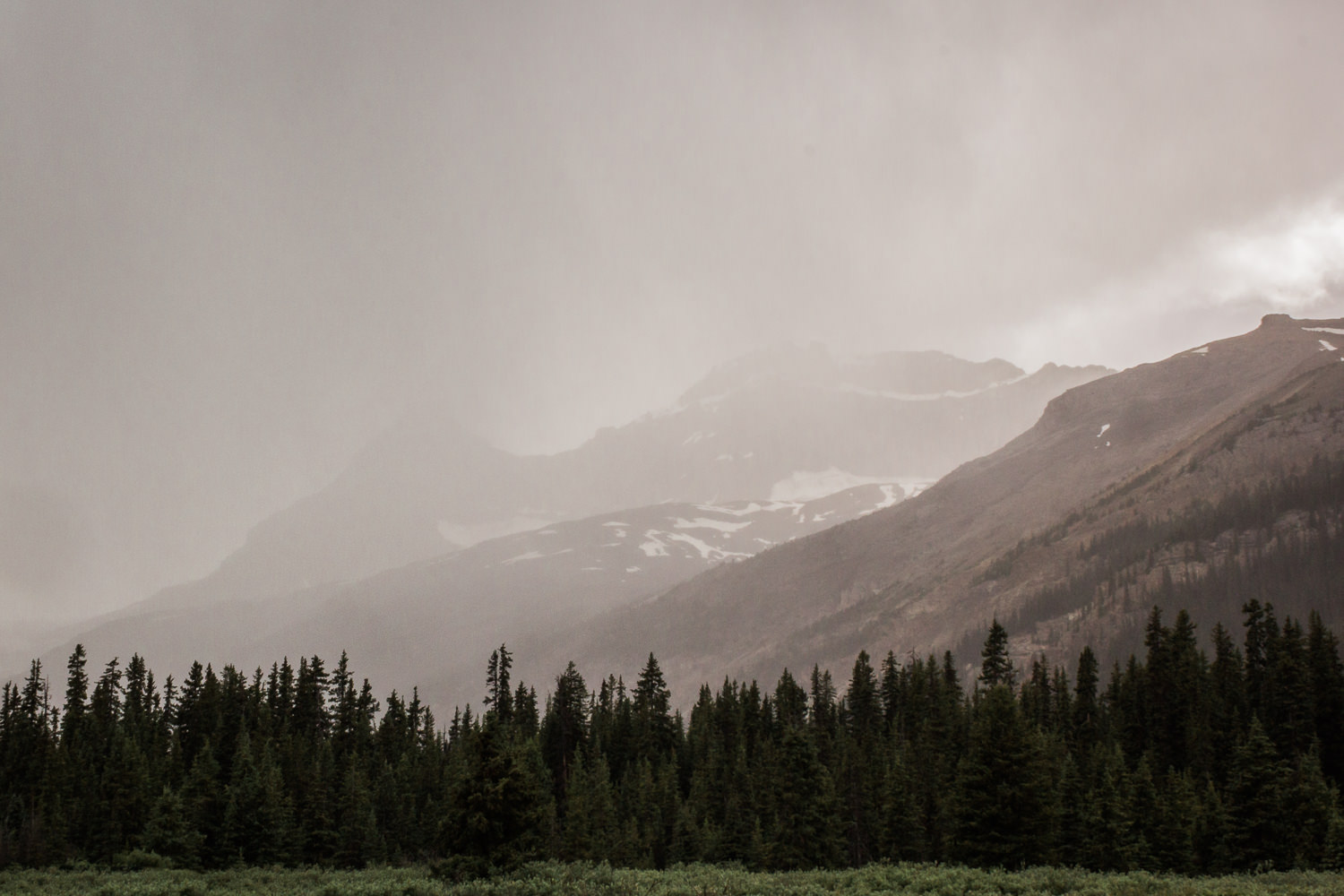 The road rises to near timberline at various points, with the high-elevation weather turning on a dime. In the four hours it took us to drive Icefields Parkway,conditions changed dramatically several times.