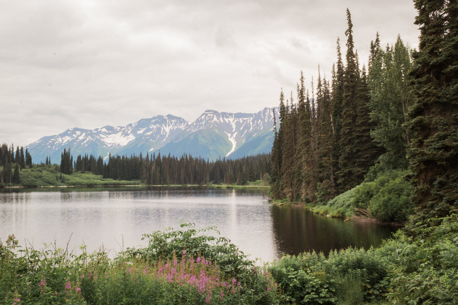 Pull off the Cassiar and you're greeted with views like this.