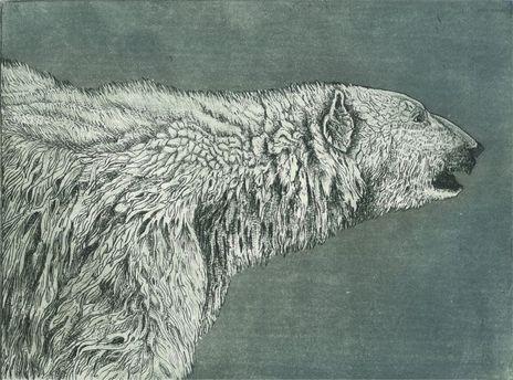 polarbear.jpg 325.jpg