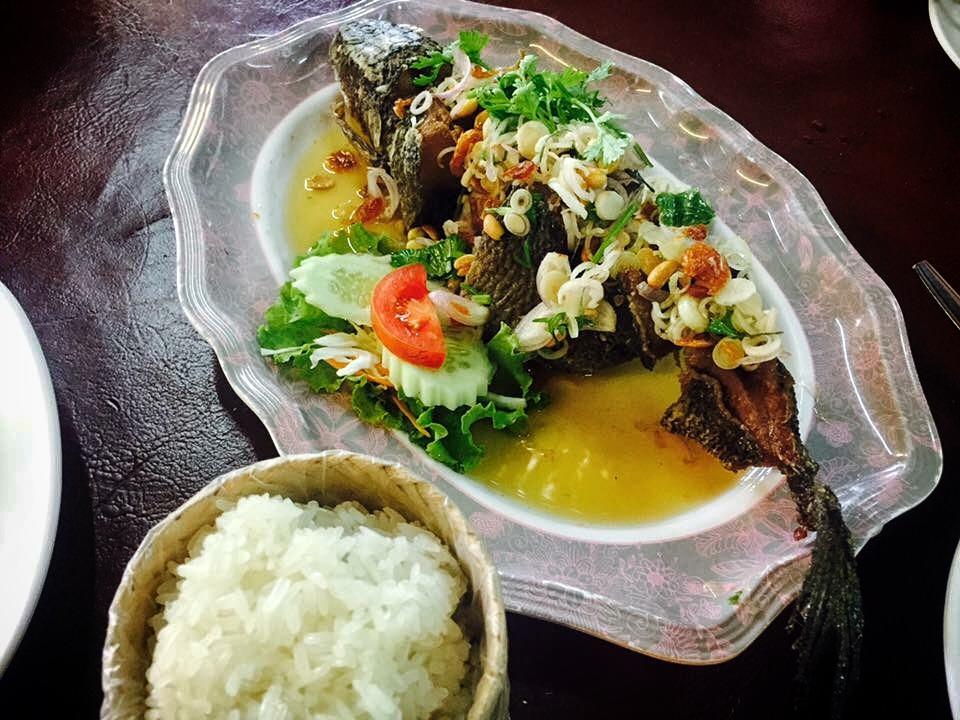 Pla Chon Lui Suan (Fish In A Garden) - In Chiangmai