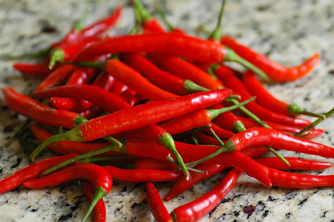 Thai Red Chilis